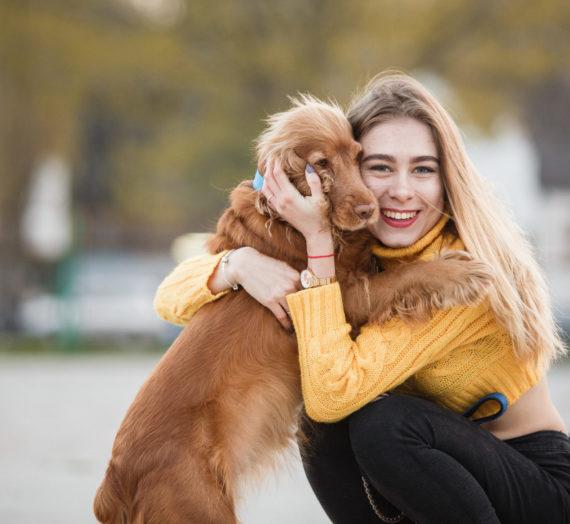 Cuidados de mi mascota en la cuarentena